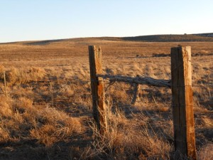A taste of Taos. This is a grazing fence on the mesa by Rivera's house.