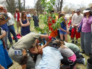 Planting a Cherry Tree during the Global Peace Walk.